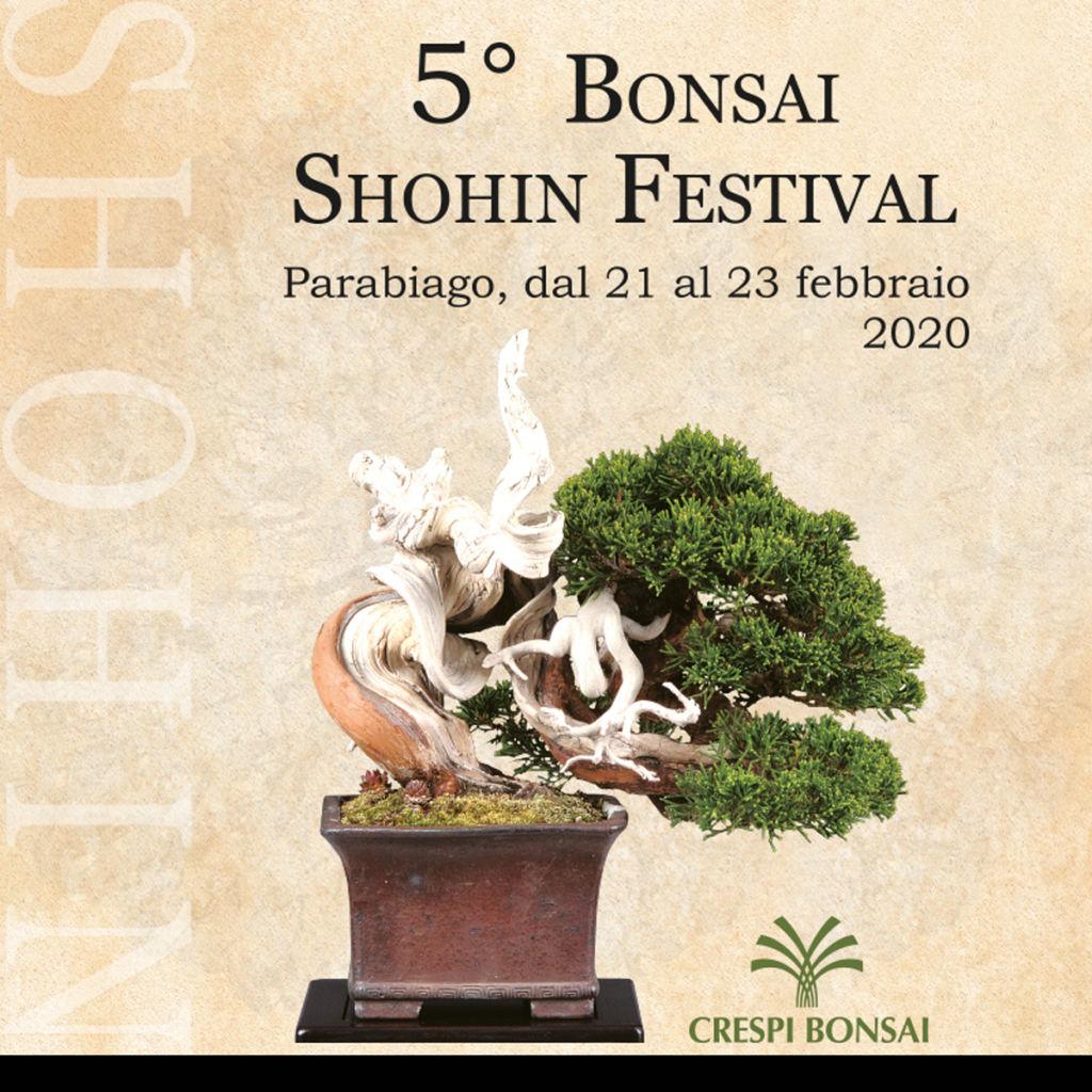 Bonsai Shohin Festival