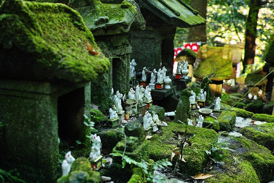 la volpe giapponese nel folklore e nella letteratura