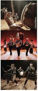 Kodo, concerto giapponese di taiko