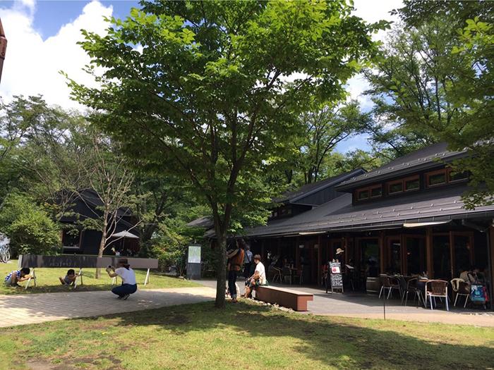 Il fascino della natura giapponese a Karuizawa