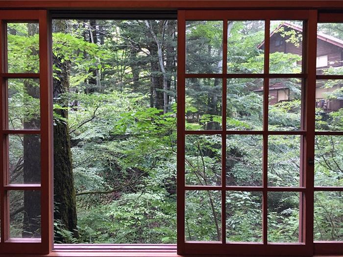 Il fascino della natura giapponese