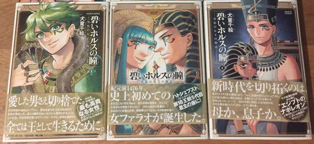 Edizione giapponese del manga di Chie Inudoh