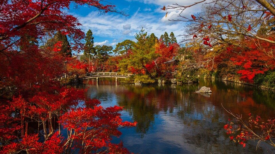 Le stagioni giapponesi