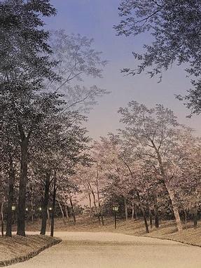 Opera di Shoko Okumura
