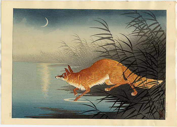 Shin-hanga: Volpe tra le canne (1930)- Ohara Koson