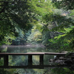 """Sanshiro Pond, Tokyo University"" by Akuppa is licensed under CC BY 2.0"