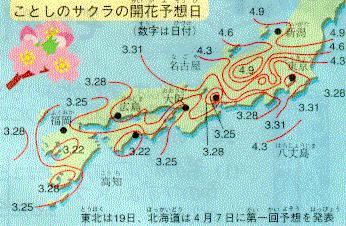 Calendario del Hanami: festival dei fiori di ciliegio