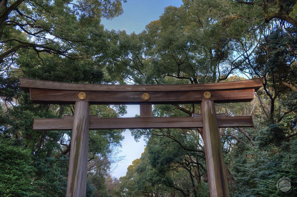 Il torii del Meiji Jingu, nel quartiere di Shibuya