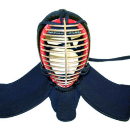 Kendo in Giappone