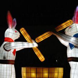 Conigli e riso sulla luna