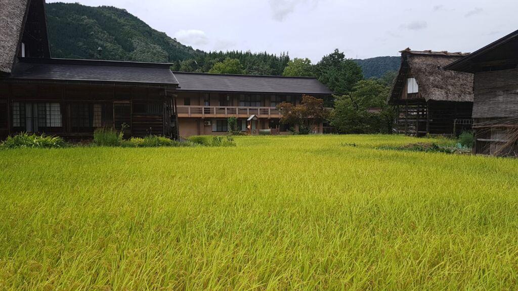 Ogimachi Vilaggio di Shirakawa-Go Gassho Giappone