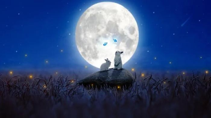 Conigli  e luna, immagine giapponese