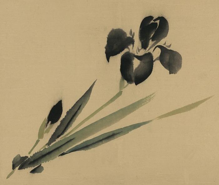 Tratti, ombre, spazi vuoti nell'arte giapponese